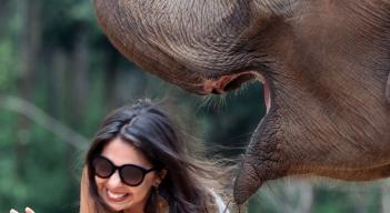 Passeio com elefantes (7)