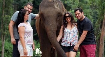 Passeio com elefantes (8)